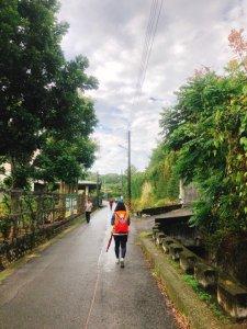 桃源里森林步道