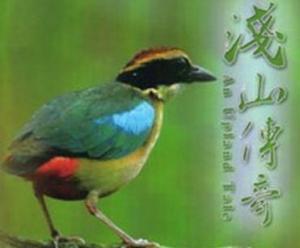 【DVD】淺山傳奇:雲林湖本八色鳥野生動物重要棲息環境