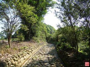 【桃園】楊梅保甲古道、東森山林步道