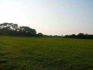 新竹青青草原步道