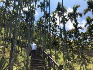 竹坑溪步道(龍宮瀑布、雷音瀑布)