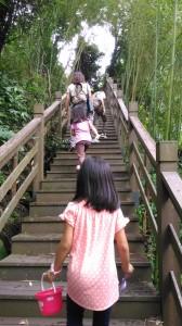 曾經拜訪過之南投竹山瑞龍瀑布