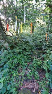 金龜岩、猴洞步道+五指山