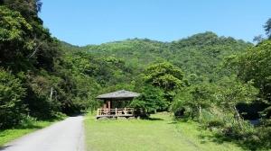 【宜蘭/大同】九寮溪自然步道順訪玉蘭茶園