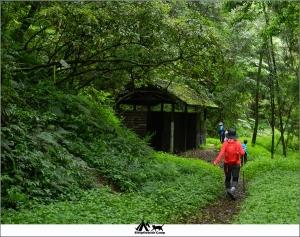 新竹五峰霞喀羅古道(石鹿段)