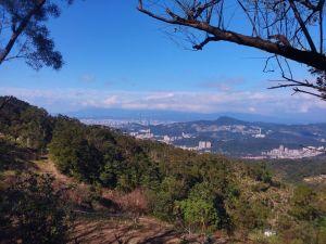 105.12.31政大後門→樟山寺→樟湖步道