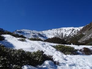 [遊~山林]雪山~~綺麗雪世界