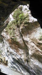 太魯閣---燕子口步道
