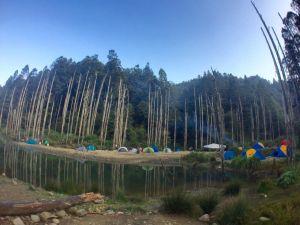 水漾森林20170228