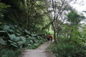 中央嶺步道