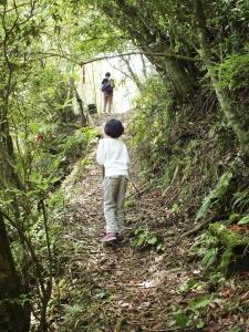 平湖森林遊樂區-(平林山 番仔坑山)