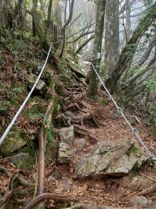 前往稍來山的步道