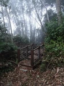 南投魚池-集集-水社大山和集集大山