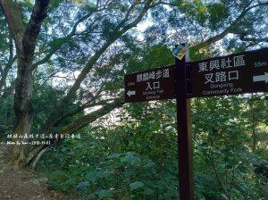 麒麟山森林步道20181103