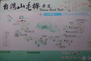 台灣山毛櫸國家步道+見晴懷古步道