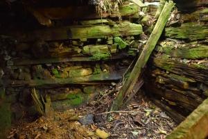 【說說山裡的故事】林業哀歌。古魯林道探訪大元山工作站,縱走水源駐在所出翠峰湖(紀錄之二)