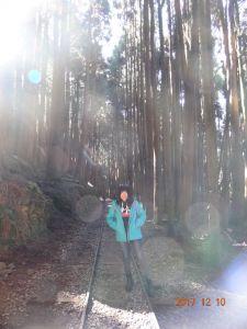 特富野悠閒散步之旅