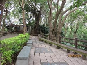 桃源里森林步道1