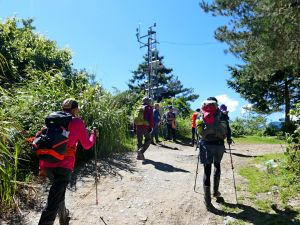 登碧綠神木旁焦土山及加碼綠水文山步道