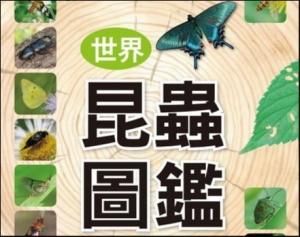【書訊】世界昆蟲圖鑑