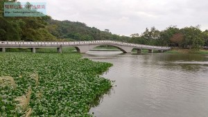 【新竹】青草湖步道