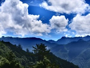 新竹觀霧-雲霧步道
