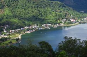 【走在台灣的脊樑上】池南、鯉魚山森林步道