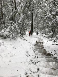 201802 東眼山追雪記自導式步道