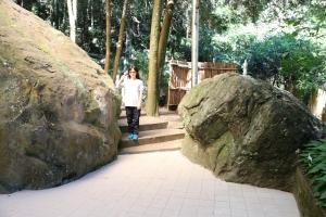 104-10-17 八仙山國家森林遊樂區