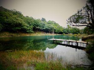 【湖景步道】新山夢湖尋幽記