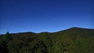 太平山山毛櫸步道→銅山