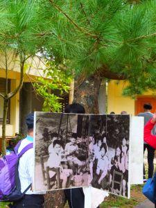 柳杉成林 百年石階---新竹橫山騎龍古道
