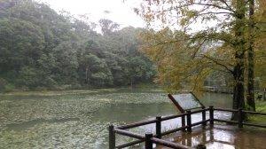 原始自然 〜 福山植物園