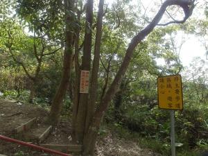台灣小百岳第43座和第44座暗影山三汀山