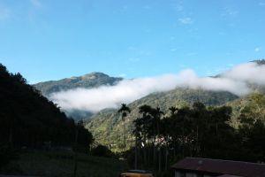 當白雲飄進山谷~武界原鄉之旅