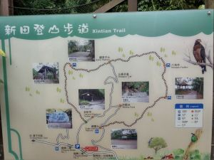 0803新田登山步道(聚興山)