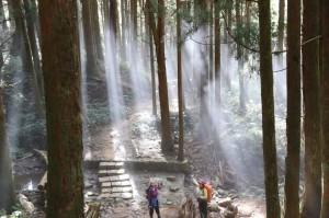 好美喔! 自忠山-東水山-東水山西峰-特富野古道全程