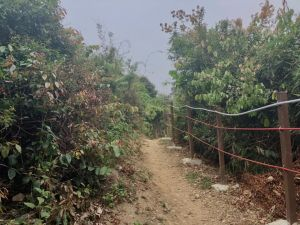 雲林縣林內鄉龍過脈步道