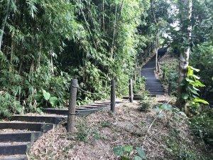 新田登山步道上聚興山