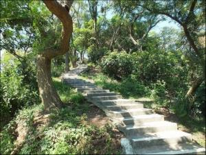 【桃園】南崁山、五酒桶山步道群
