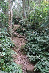 溪洲山步道和石門水庫之美