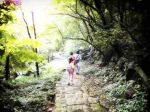 步道小旅行-金山魚路古道