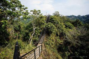 【雲林】林內龍過脈步道、南林內山