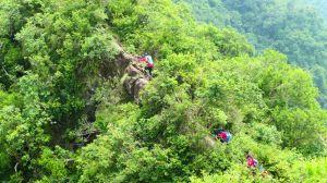 旗靈五峰縱走 。很美的山稜線。超熱的天際線