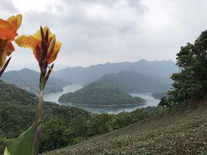 漫步石碇千島湖