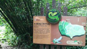 20180707漫步福山植物園