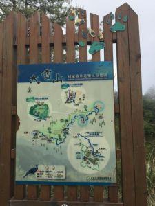 2018/05/18大雪山毛地黃盛開