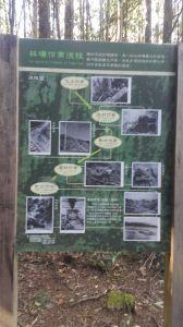 八仙山國家森林步道 2016 12 10