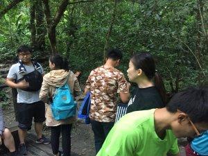 林美石盤步道一日遊