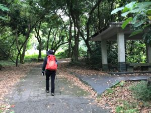 二水登廟步道健走松柏坑山